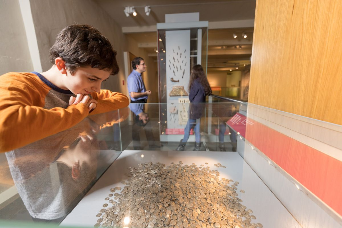 Boy looking at coin hoard