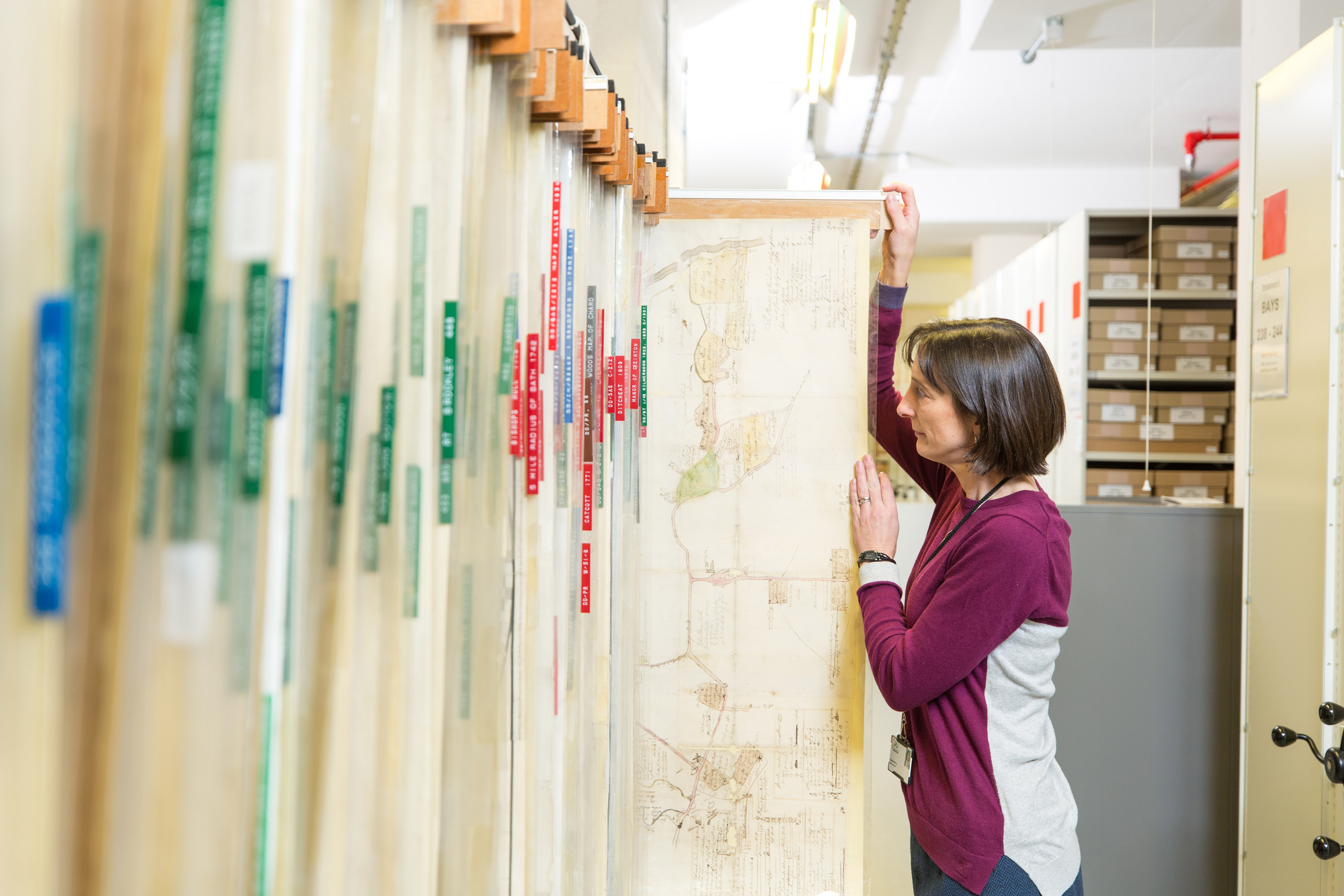 Archivist looking at map