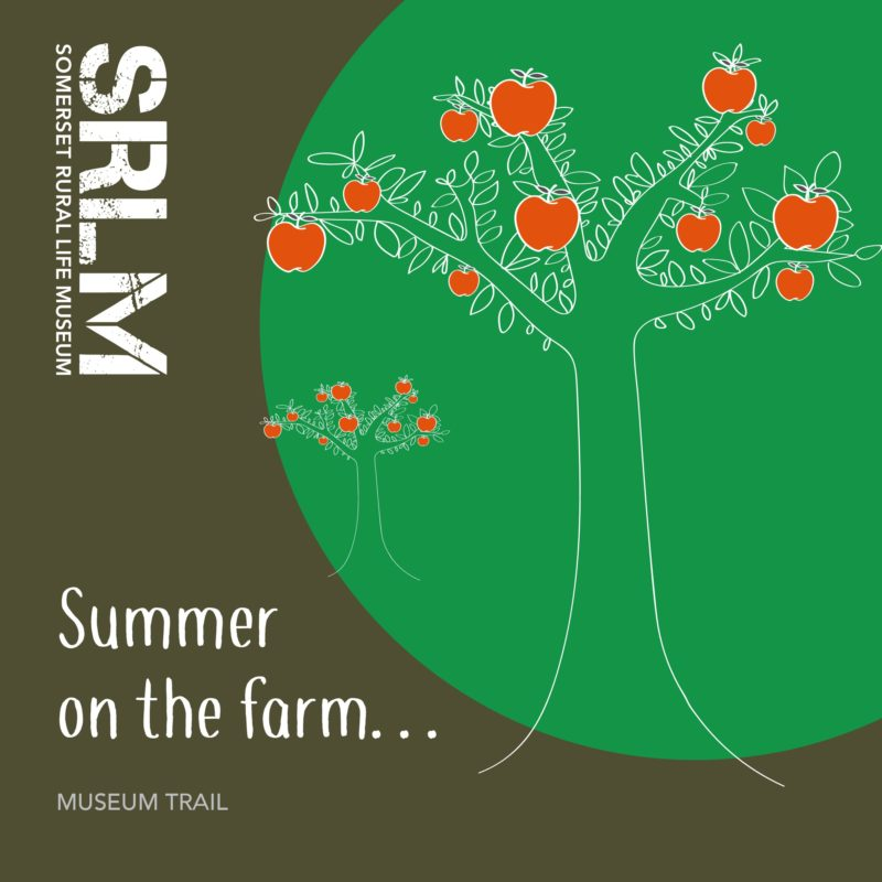 Summer on the Farm Trail Cover Page
