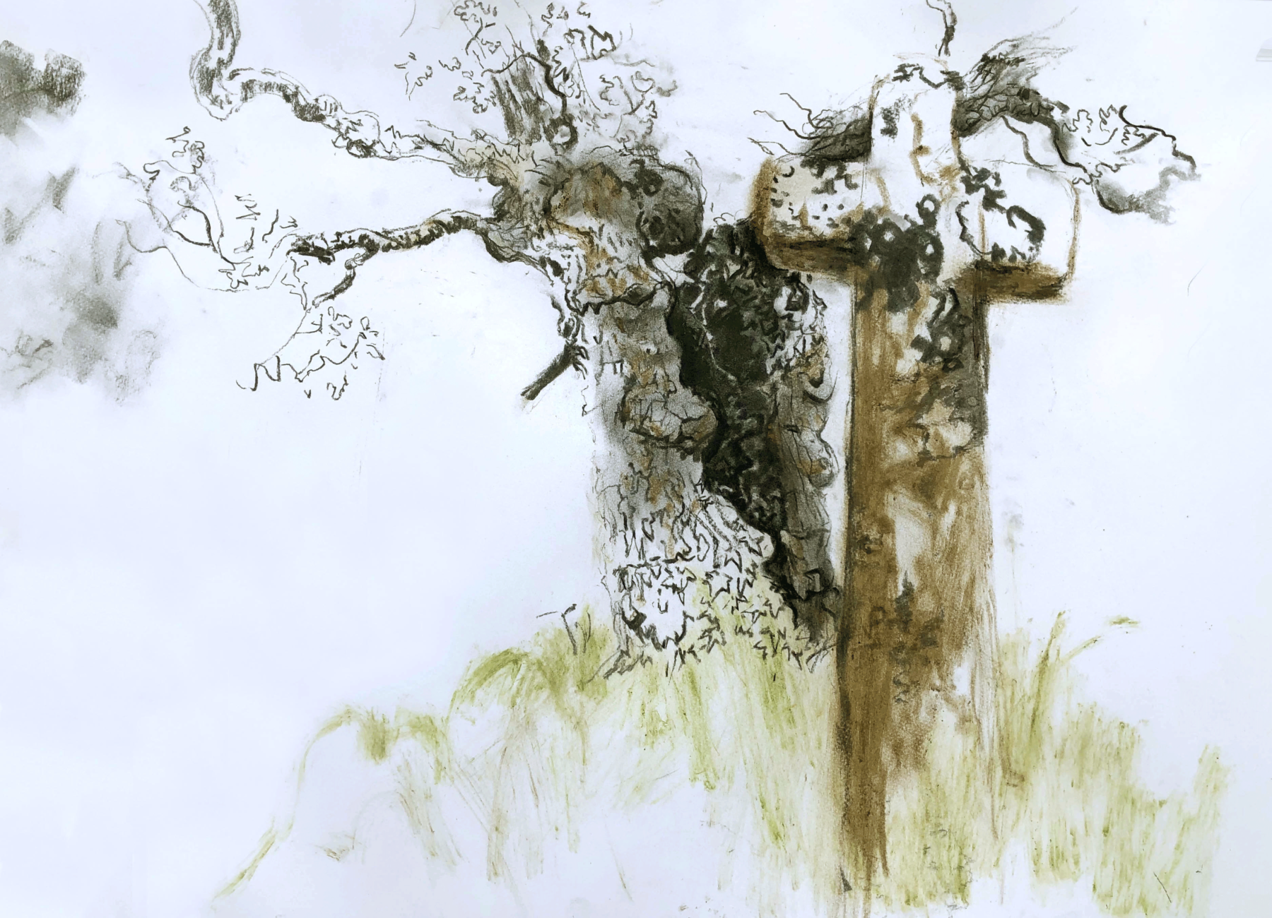 An abstracted tree and cross float against a white background