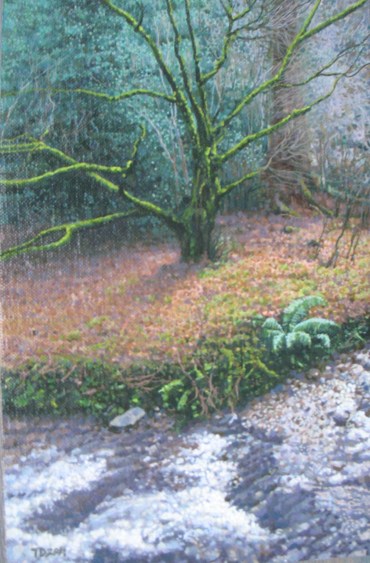 The artist has painted a tree with a short trunk and multiple green-lichen topped branches reaching wide in different directions. It sits atop an orange and green bed of leaves and has green leaved plants growing behind it. In the foreground is a snowy pathway.
