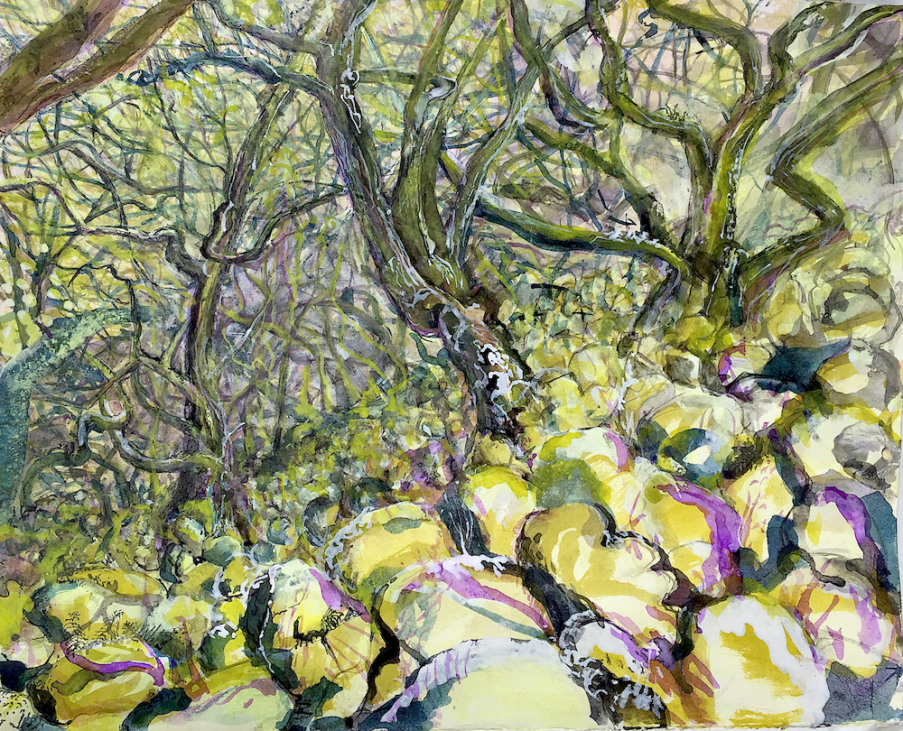 A sloping forest of twisting tree branches and leaves is shown in yellows, greens and purples against a floor of closely packed boulders The composition gives the feeling you are looking deep into the forest, with the boulders getting smaller and more abstract towards the centre of the painting.