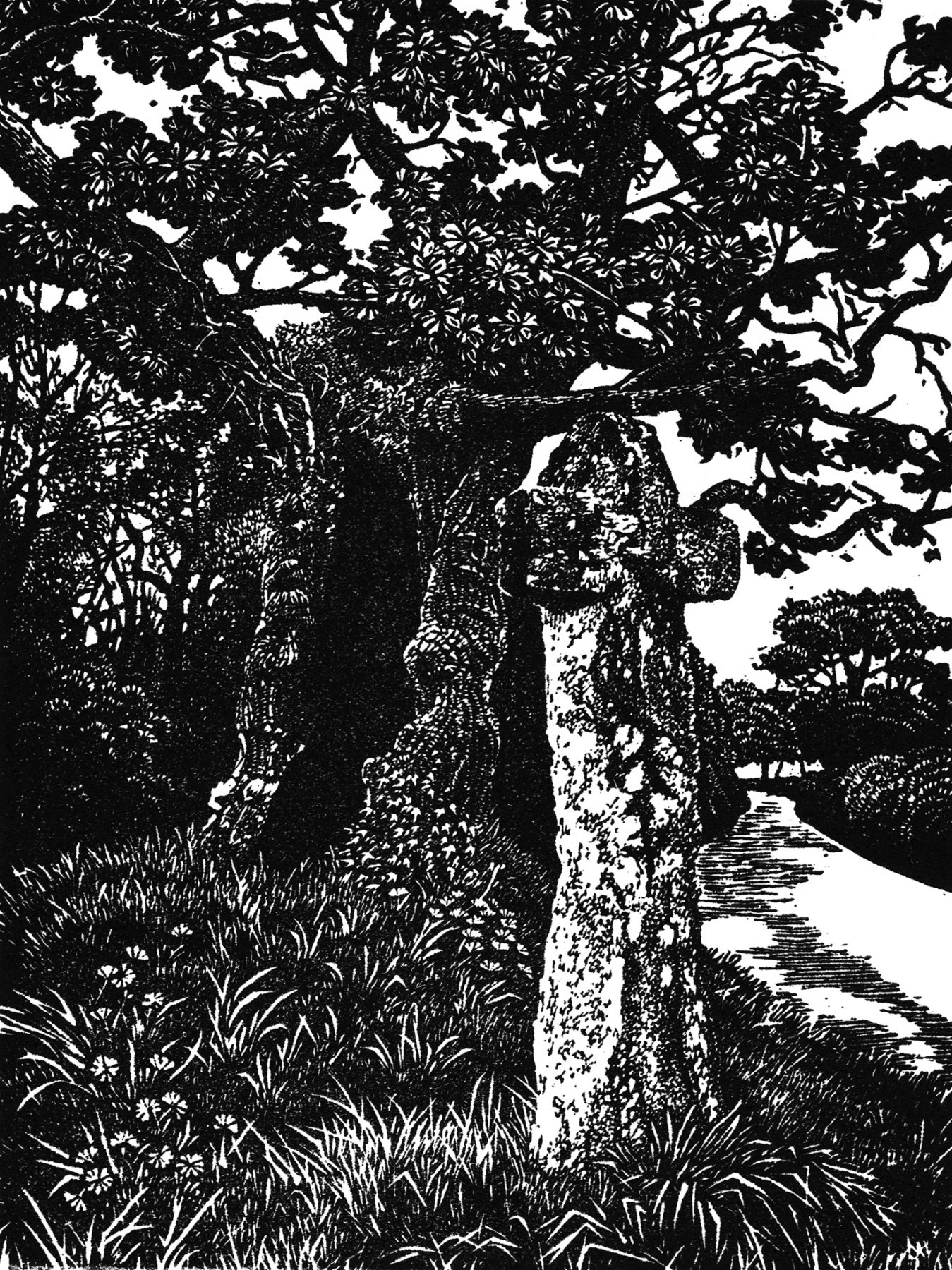 A black and white woodcut of an ancient looking tree with a hole at its centre, alongside a cross with moss growing on top of it