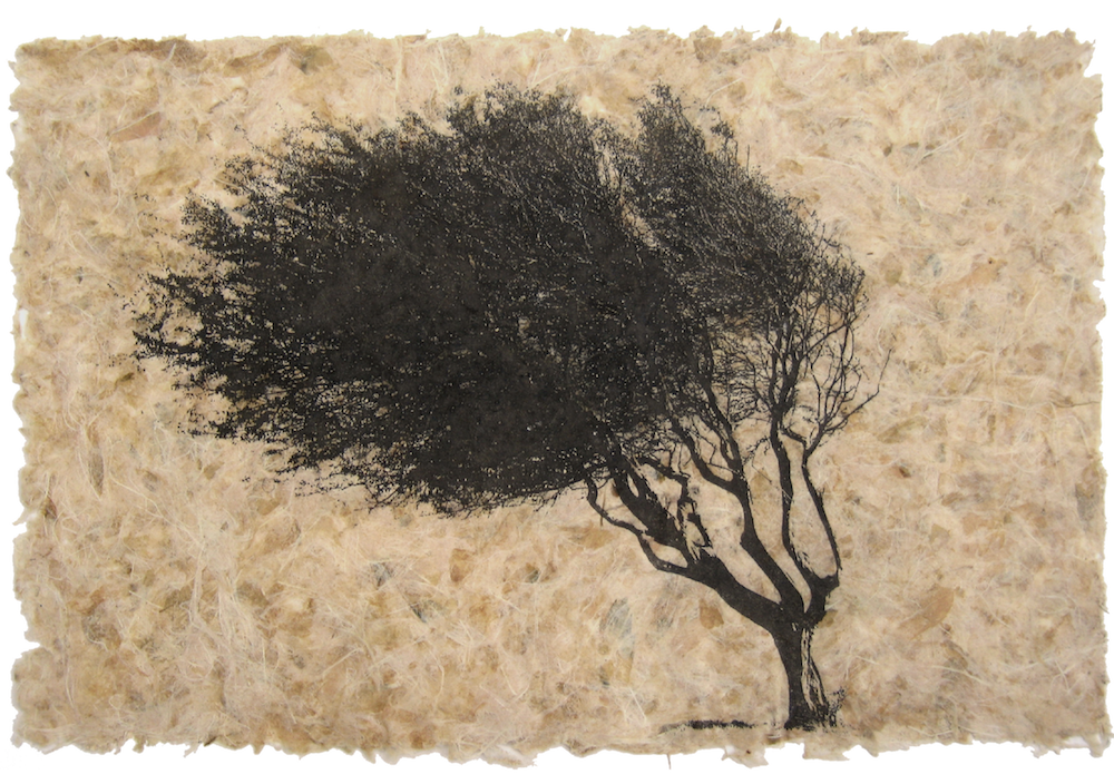 A solitary black tree with a densely leaved canopy leans to the left in the breeze . It's set against a backdrop of textured beige paper, which has been made from leaves.