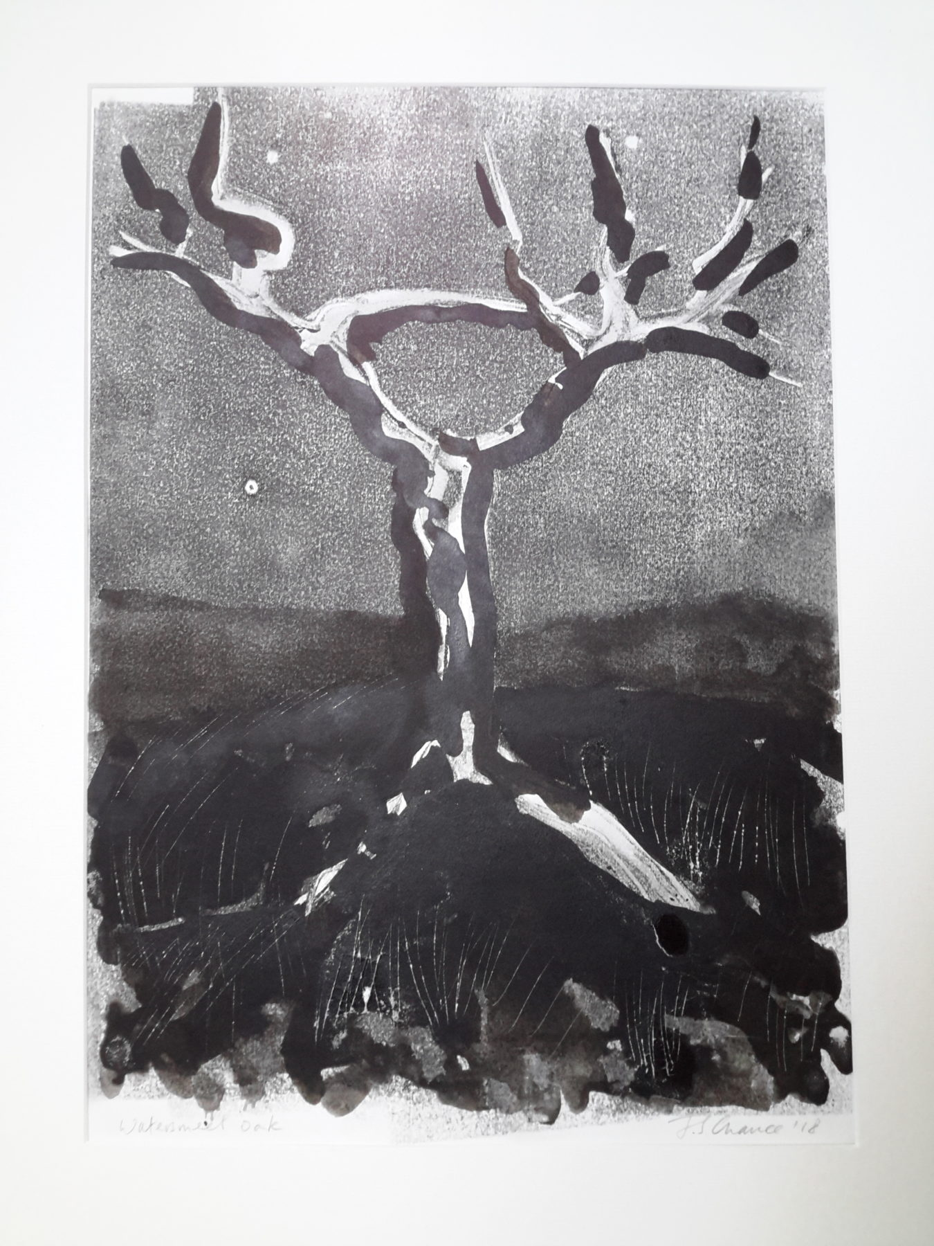 Ink wash has been used to create a composition with three elements: a dark black ground; grey sky and the abstracted branches of a tree.