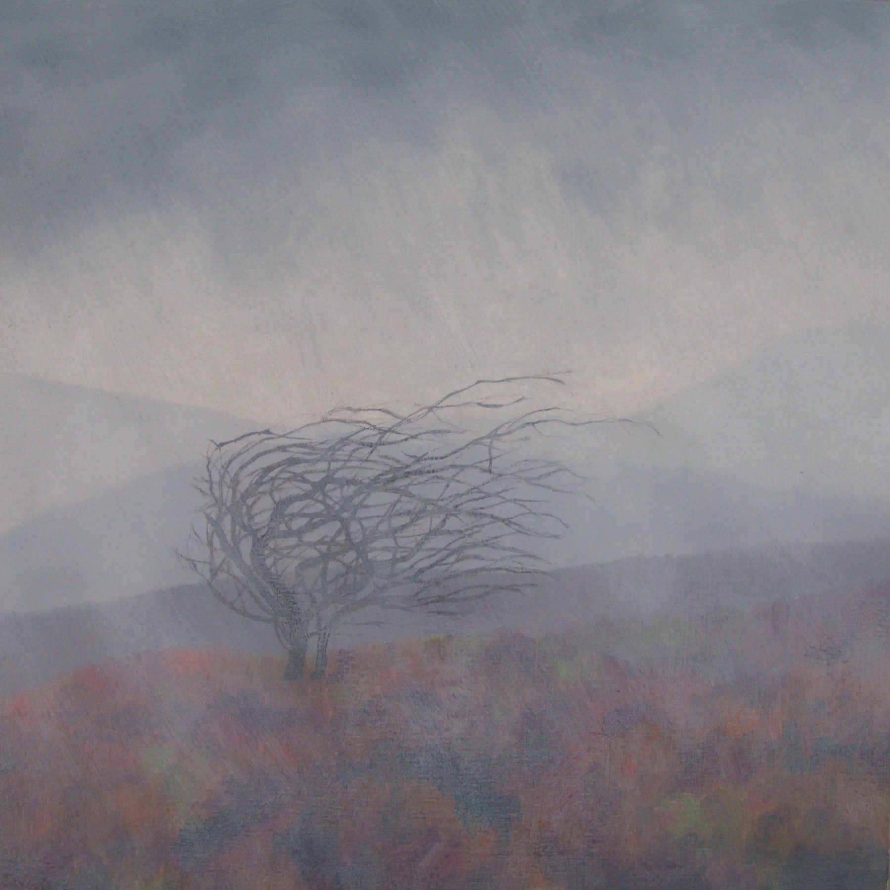 A solitary bare branched tree sits atop an orangey-green bed of foliage atop a rain drenched hill. The silhouettes of grey hills are shown in the background.