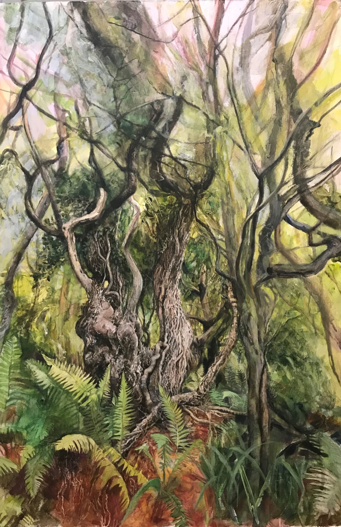 This is a portrait painting of twisting tree trunks and branches reaching upwards, with a dense bed of ferns at their base. A sky of pale pink and blue gives a slight dream-like quality to the composition.