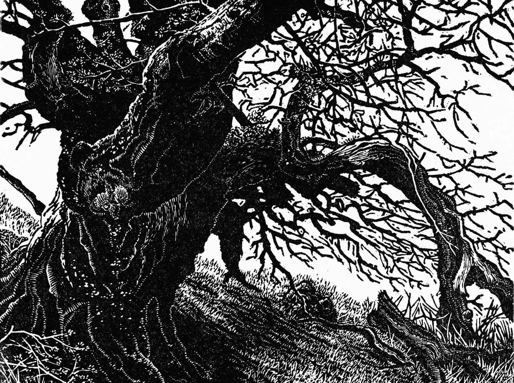 The left hand side of this black and white woodcut image is taken over by a wide ancient tree trunk. The tree leans slightly to the right, and its branches and leaves tumble forward onto the floor below.