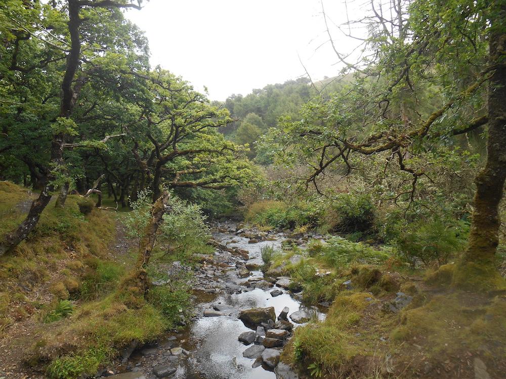 Tim Craven photograph of Badgworthy Water in Exmoor