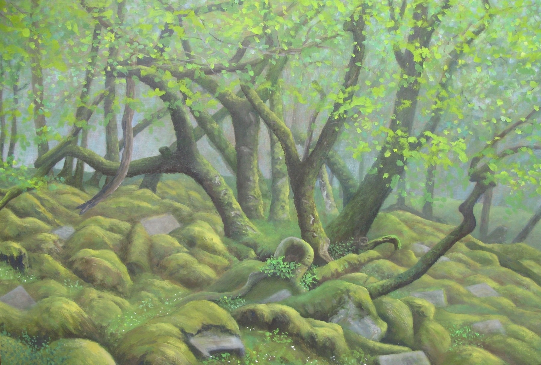 A rocky ground with tree trunks and green leaves growing upwards