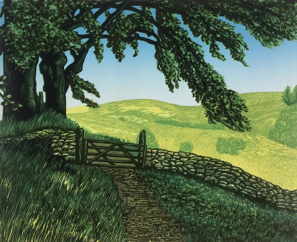 A leafy green tree leans over a path through a gate to the green hills beyond